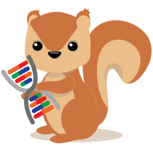 Squirrel holding DNA - DNASquirrel protects your genetic privacy with anonymous 23andMe consumer genetic test results