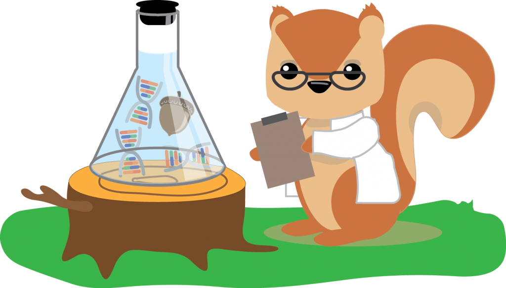 Squirrel scientist looking at direct-to-consumer genetic test results